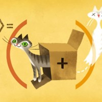 Google Doodle celebrates quantum physicist with an Irish connection