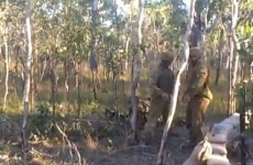 Soldier meets his match in tree tackle fail