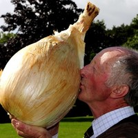 These are some of the silliest Guinness World Records