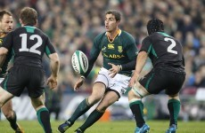 Pienaar gets Springbok start but Kirchner surplus to requirements