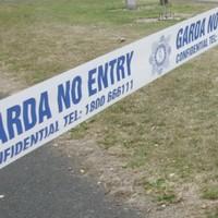 Sawn-off shotgun and ammunition found stashed in Offaly graveyard