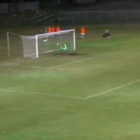 Like 40-yard wonder goals? Well here's two satisfying crackers