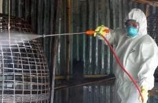 9-year-old boy dies from bird flu in Cambodia