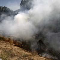 Forest fires on holiday island of Majorca forces people to flee