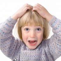 Parents urged to check children for head lice in the coming weeks