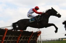 World Hurdle Preview: Big Buck's worth every penny