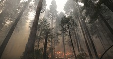California wildfire prompts air warnings 100 miles away