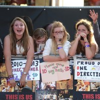 How a campaign to ban One Direction fans from Twitter backfired