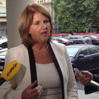 Multinational companies are not here just for tax breaks — Burton