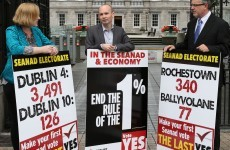 The 1 per cent: Socialist Party say 99 per cent didn't vote in last Seanad election