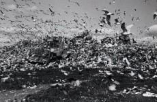 London exhibition examines... dirt