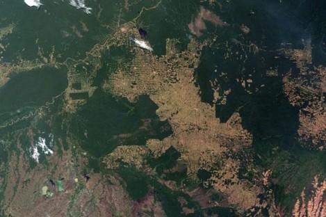 Brazil's Rondonia rainforest, 2008