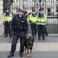 Two hospitalised after gardaí use pepper spray during Dublin protests