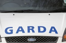 Gardaí respond to burglary call - and arrest two men inside house