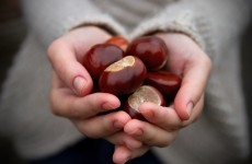 UK towns are letting drivers pay for their parking with conkers