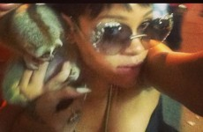 Rihanna's Instagram photos used as evidence in Thailand