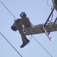 Seagull trapped in power lines rescued by a helicopter