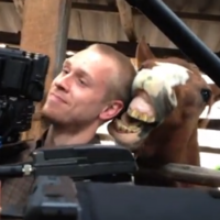 WATCH: Horse nibbles cameraman's ear, is clearly taking the mick