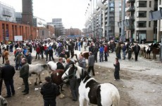 Teenager arrested in connection with Smithfield horse fair fight
