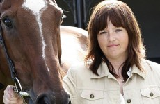 Equine charity calls for castration of horses in 'problem' communities