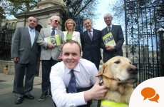 Column: I went blind at 14 – but my guide dog Miles has changed my life
