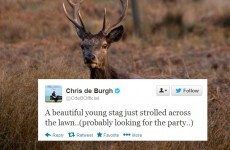 Tweet Sweeper: Chris de Burgh tells a hilarious joke