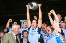 Na Piarsaigh are crowned Limerick senior hurling champions