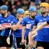 Cork senior hurling wins for Sarsfields, Bishopstown and Ballymartle