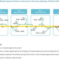 "This shocking graph shows 13 ""missed opportunities"" in treatment of Savita"