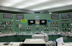 Shares in Fukushima plant owner TEPCO plunge