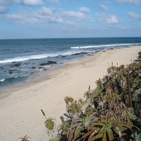 Man killed in shark attack off South African coast