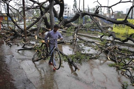 An Indian man with his bicycle makes his way through uprooted trees fallen during Cyclone Phailin on a road in Berhampur.