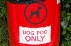 "Welsh Police apologise after naming dog poo talks ""Operation Irish"""