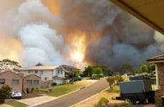 Australian military investigates whether it is to blame for bushfire