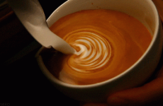 8 GIFs that prove coffee is a beautiful, beautiful thing