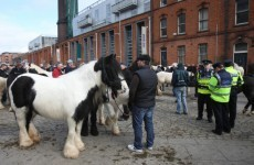 Three arrests following Smithfield horse fair