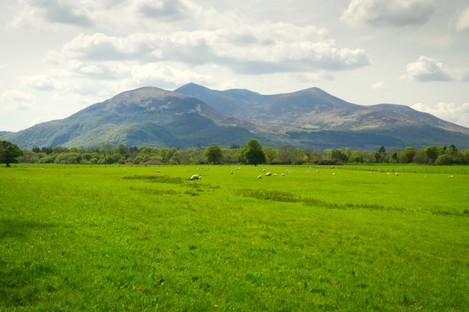 Mountains and grassland in Killarney