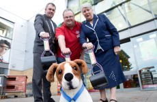 Free pooper-scoopers offered to tackle dog poo in Limerick