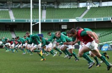 5 things Ireland must do in the November tests
