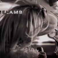 Homelamb is Sesame Street's must-watch Homeland parody