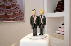 Dublin couple one of first to enter same sex civil partnership