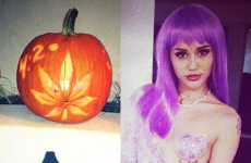 Miley Cyrus has porno pumpkins... it's The Dredge (NSFW)