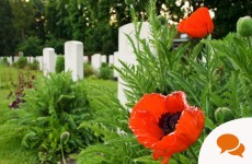 Column: As an Irish woman, I believe in wearing the remembrance poppy. Here's why...