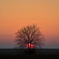 The Week in Photos: Tangerine Dream