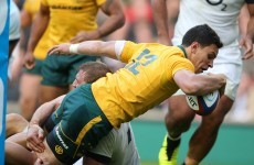 Video: Here's the try Australia scored against England