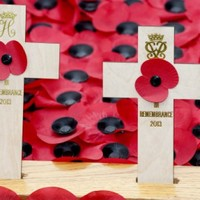 Gilmore marks Remembrance Day in Belfast