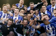 Ballyboden crowned Dublin hurling champions with win over Lucan