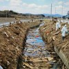Japanese dash to recover decomposing bodies near Fukushima