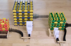 These breathtaking domino tricks took three months to set up
