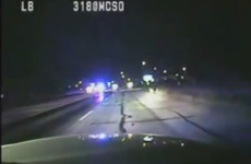 WATCH: US cops in multi-car chase with baby kangaroo